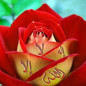 -islam-14729033-2083-2083